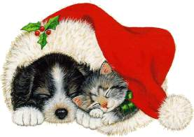 Puppy and Kitten in Xmas Hat